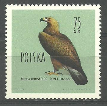 Polska 1960 Mi 1203 Fi 1068 Czyste **